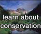 learn about conservation